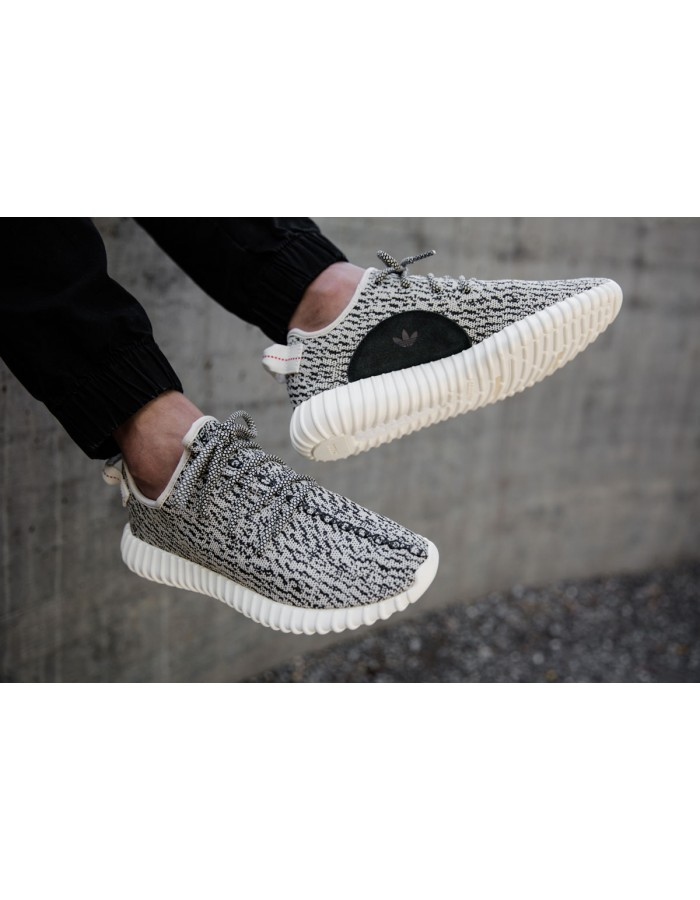 Adidas Yeezy Boost 350  Turtle Dove мужские
