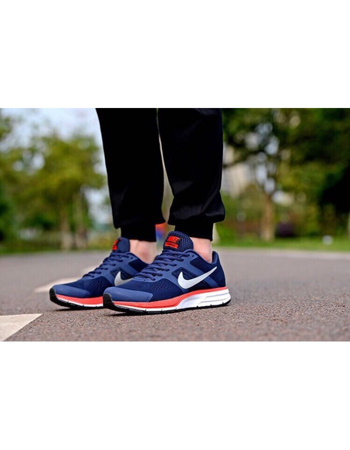 Nike Air Pegasus +30 мужские