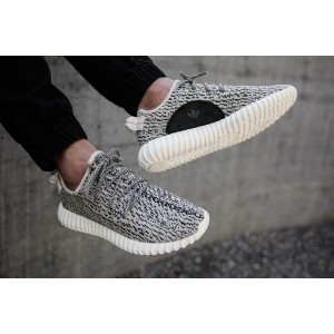 Adidas Yeezy Boost 350  Turtle Dove мужские